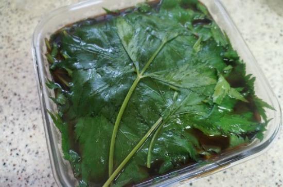 (당귀잎) # 잎당귀로 당귀장아찌만드는법