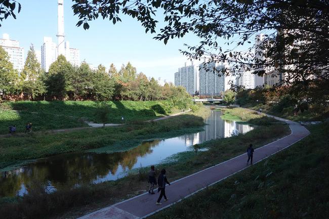 [2015.10.25] 안양천 ~ 학의천 ~ 양재천 ~ 탄천
