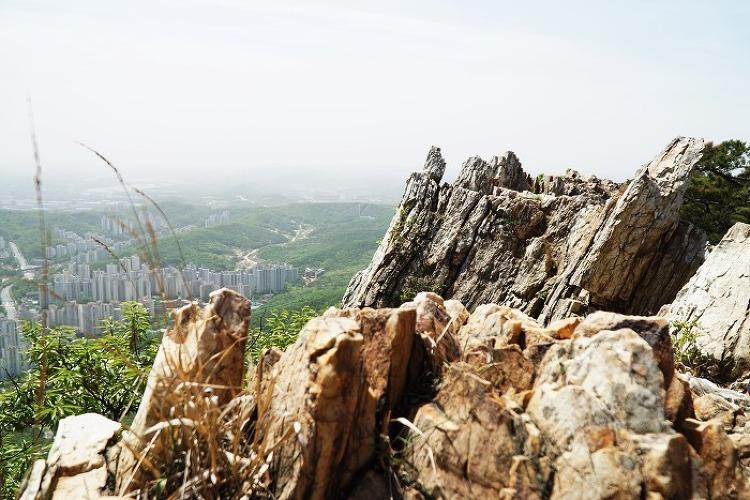 토요산행 안양 수리산 170506