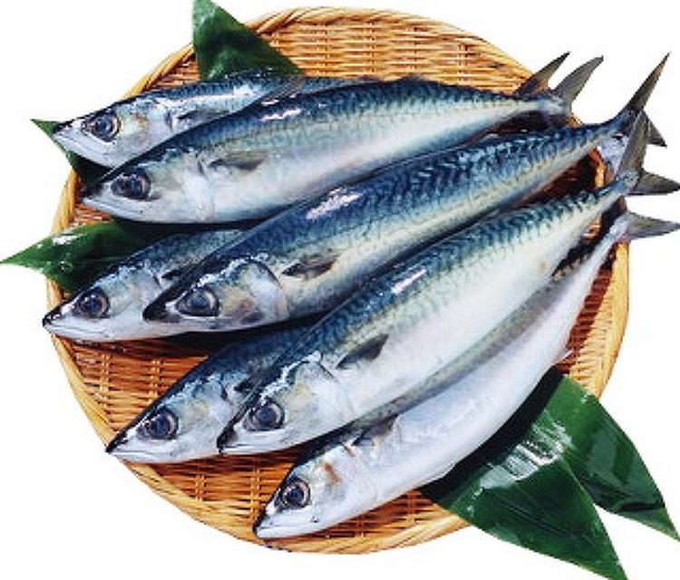 치매예방, 등푸른 생선에서 DHA 섭취로 예방하..
