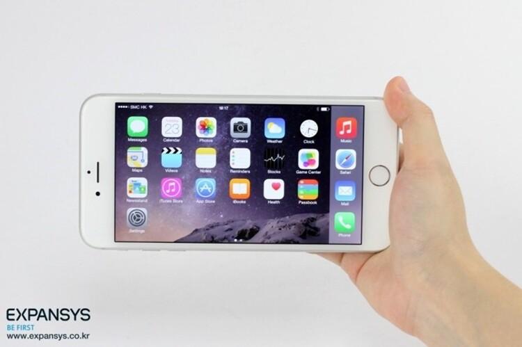 애플 아이폰6 플러스 & 아이폰6 간략 비교 개봉기 후기 [익스펜시스 코리아]