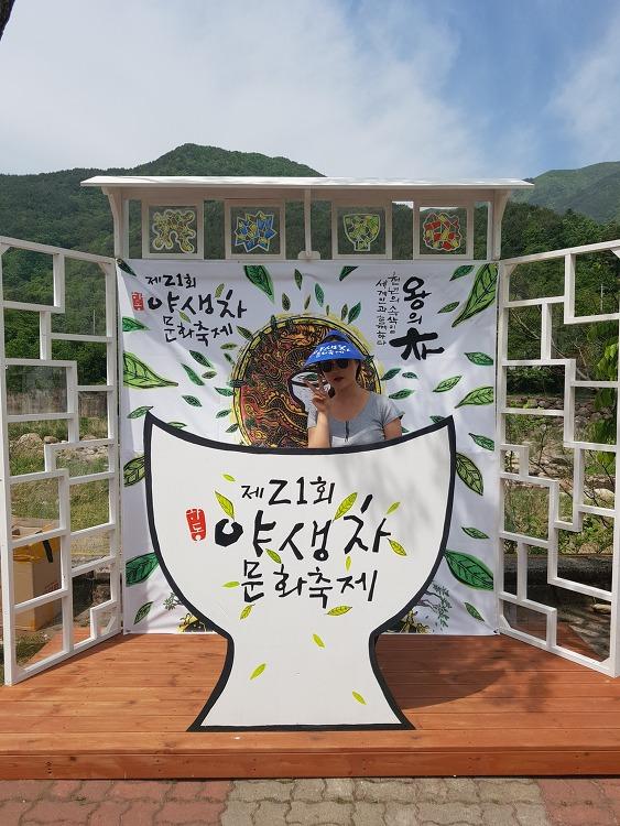 21회 하동 야생차 문화축제