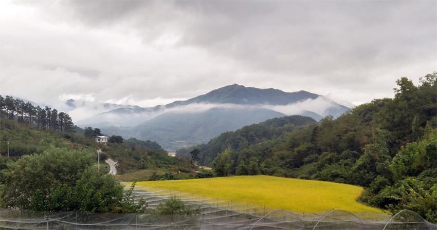 [포토에세이] 매일 아침 창 문을 열면 보이는 풍경