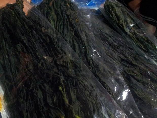 [한정판매마감] 마라도미역, 2015년 자연산햇미역 주문받습니다!