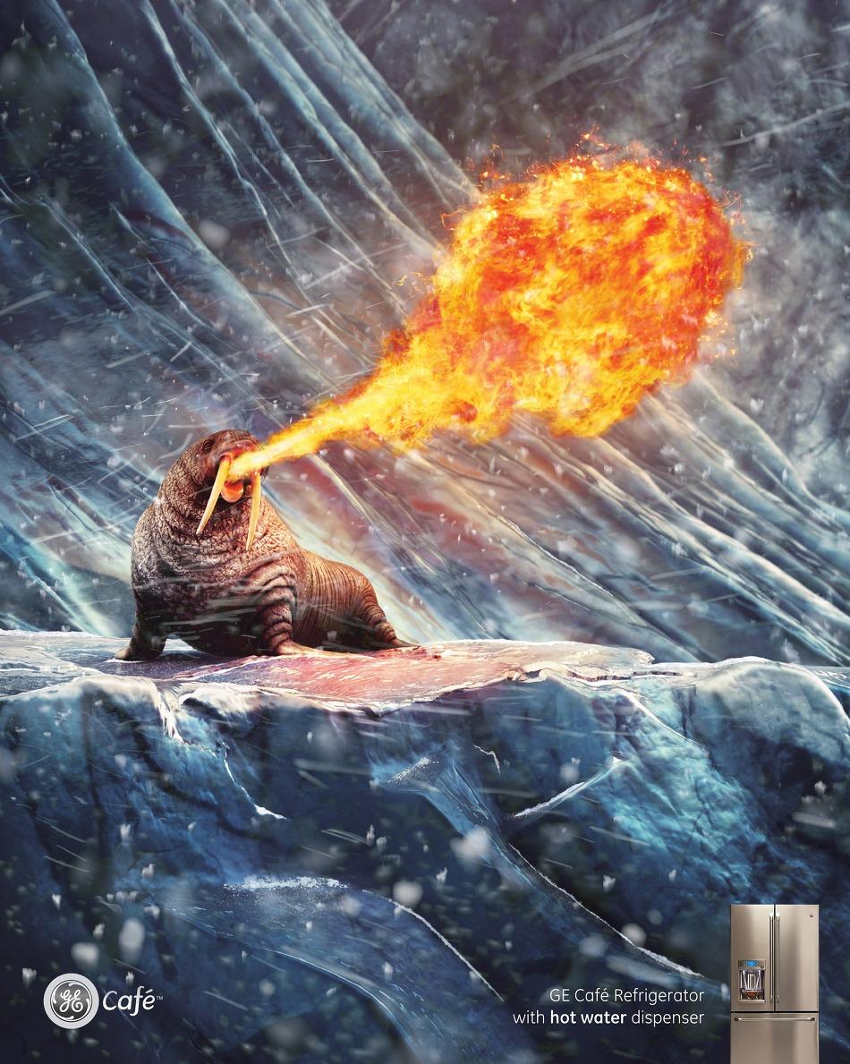 GE의 온수 공급이 가능한 까페 냉장고 인쇄광고 - 북극곰, 펭귄, 바다사자 시리즈.
