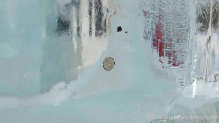 캐나다 동전입니다