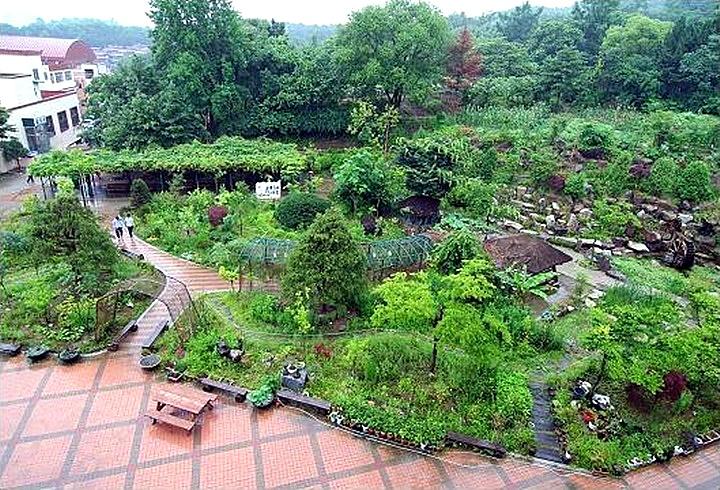 남양주 광동중학교 학교숲 야외숲
