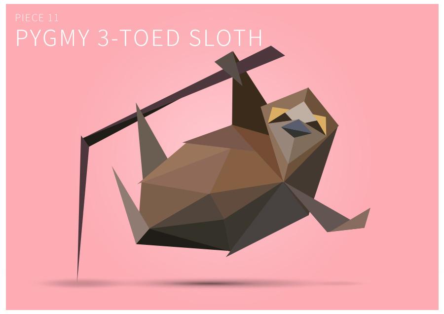 Piece 11 Pygmy 3-toed sloth