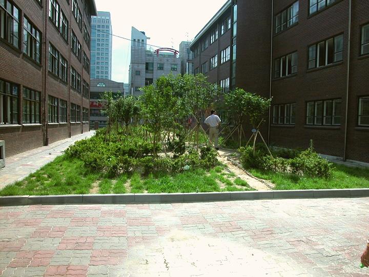 대전둔산초등학교 학교숲 화단숲