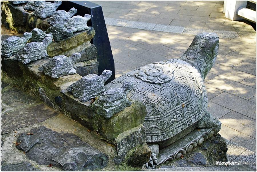 향일암 거북이