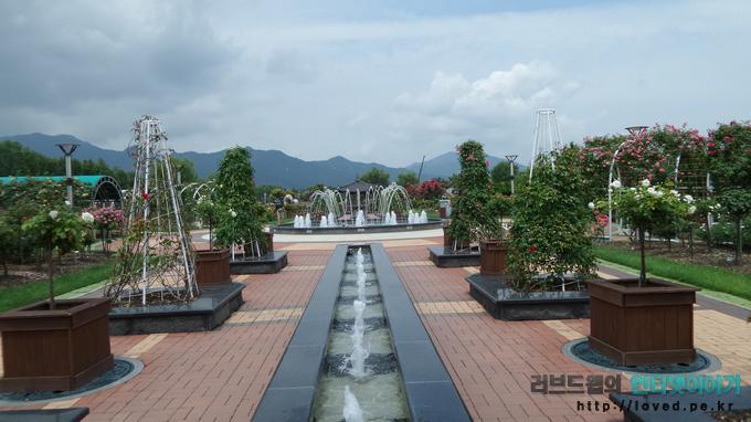 당일치기 여행 코스, 곡성 섬진강 기차마을, 곡성 기차마을, 장미공원