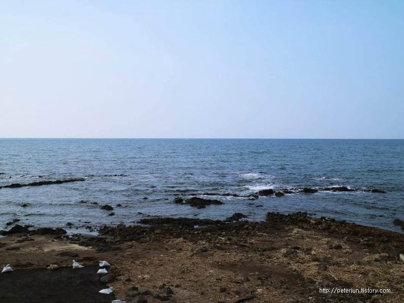 삼양해변 바다