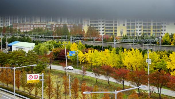 도시의 가을풍경