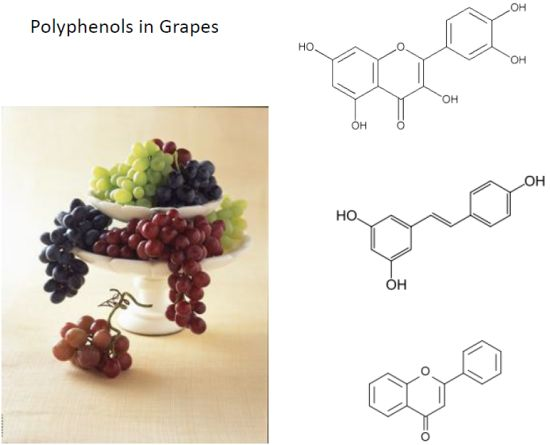 grape nutrients polyphenol