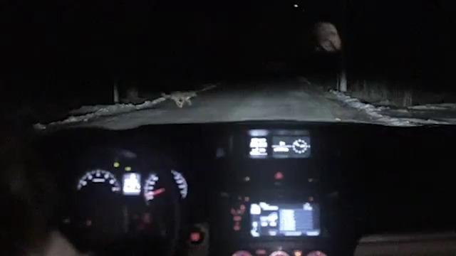 불곰국에선 개가 차를 훔치지만, 러시아(Russia)는 오늘도 평화롭습니다 - 스바루(Subaru)의 바이럴 영상,