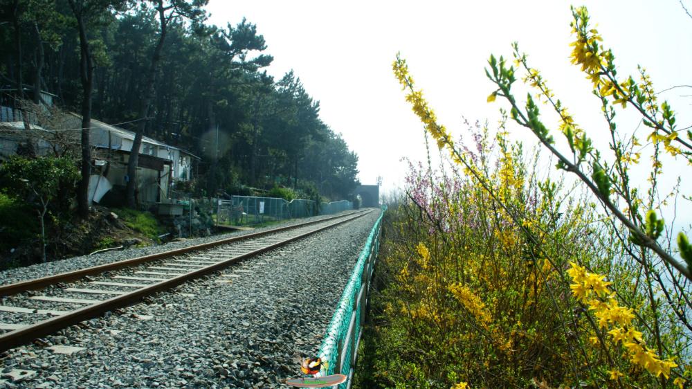 동해남부선 철로 따라 미포에서 송정까지