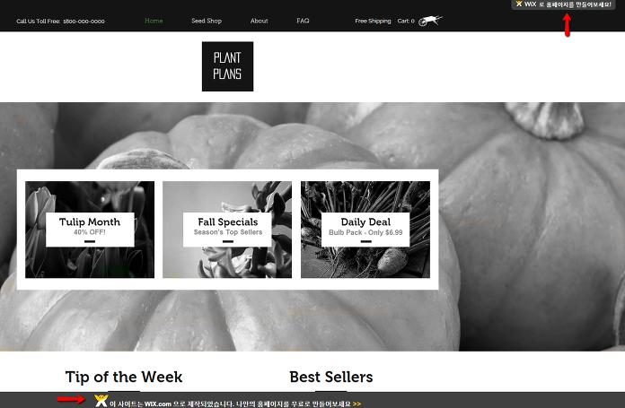 윅스 홈페이지 화면