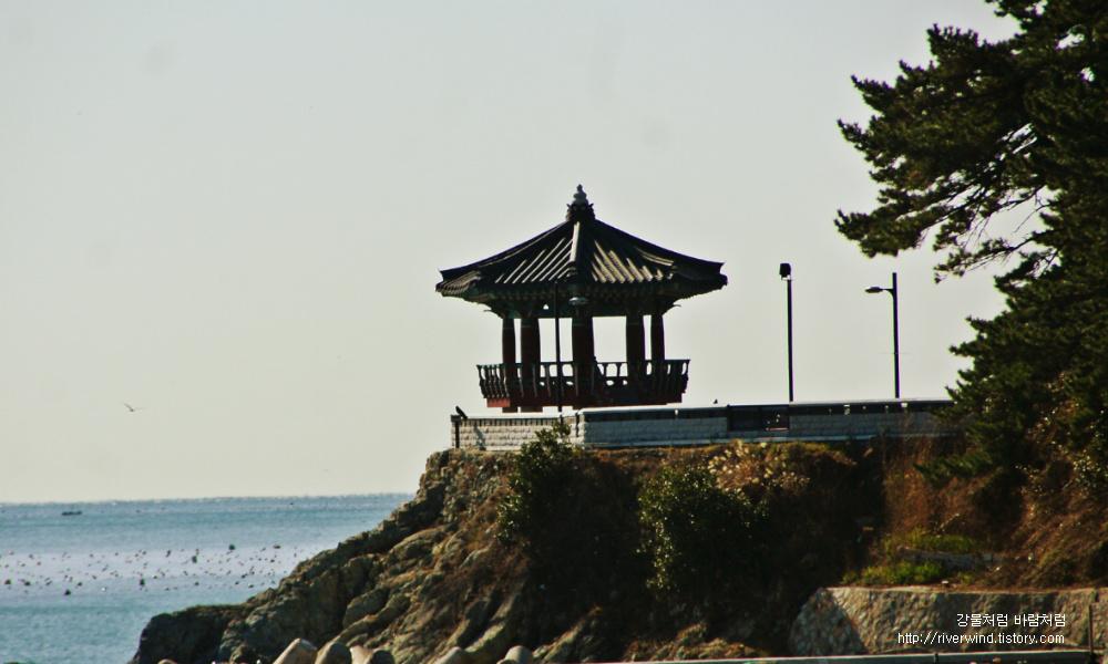 죽도공원 팔각정