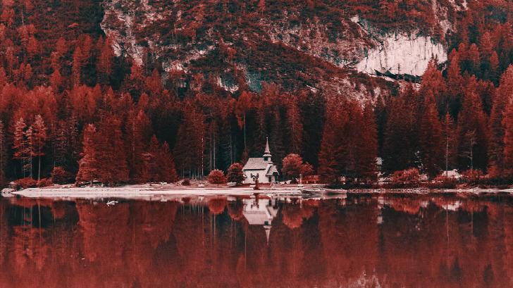사진으로 체험하는 색맹이 보는 세상