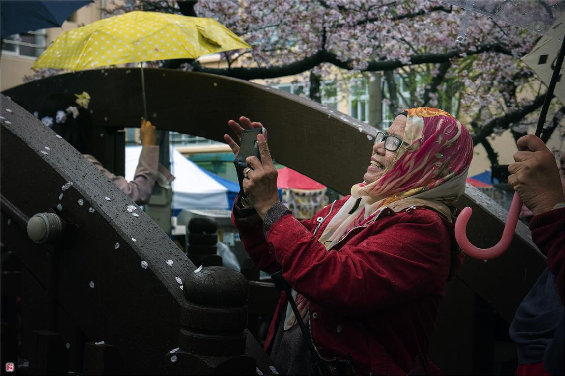 [삼성NX500] Rain? Never mind