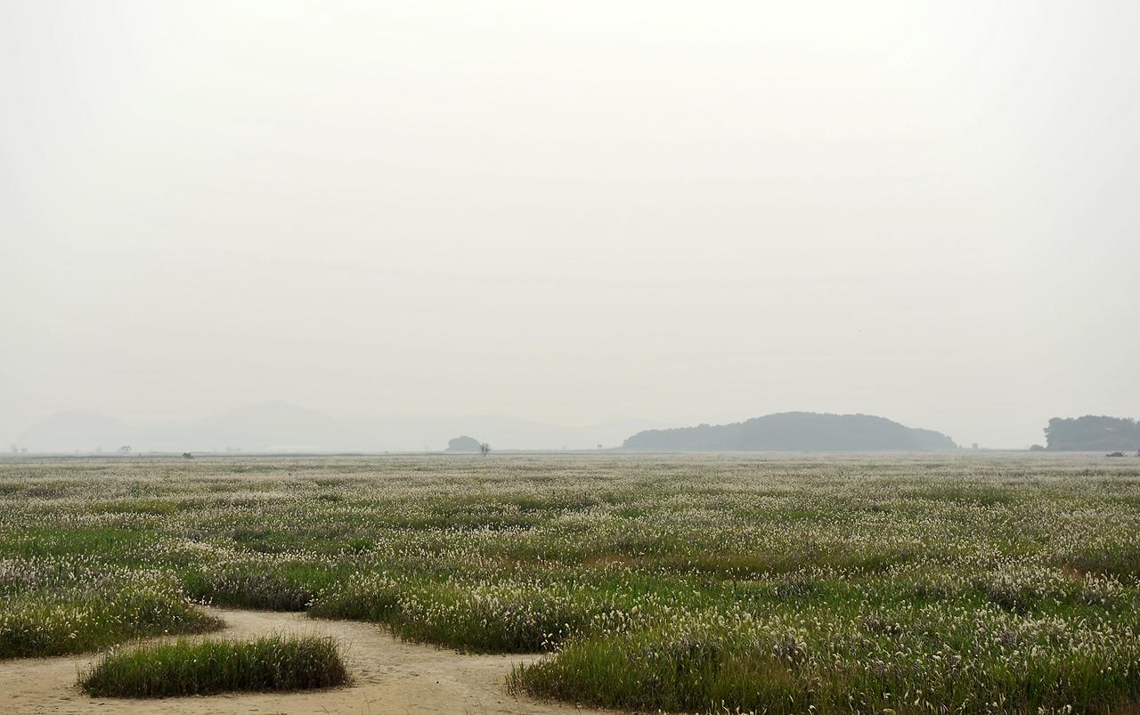 2012년6월 우음도 황금산