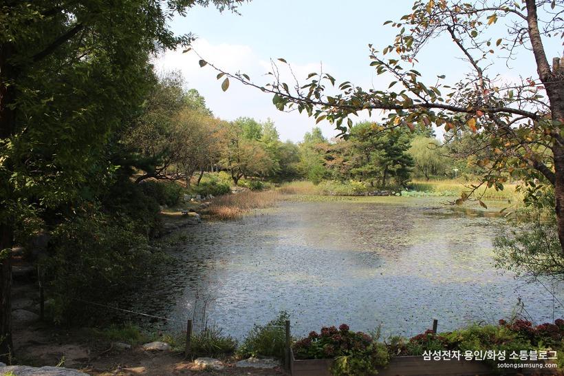 물향기수목원 수생식물원