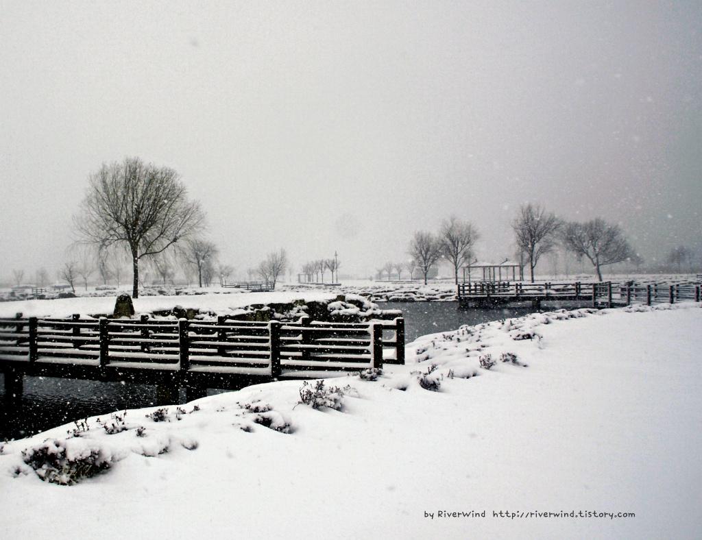 눈오던날 부산 삼락공원 풍경