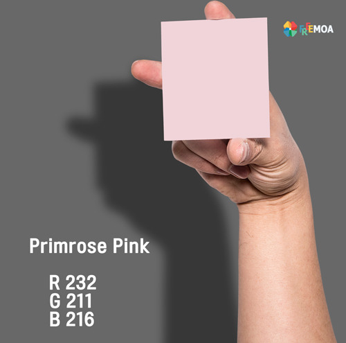 프림로즈 핑크