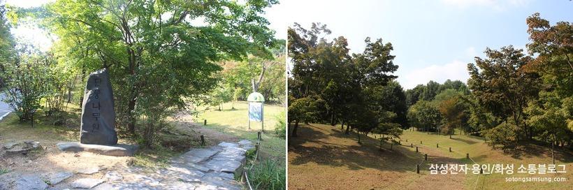 물향기수목원 단풍나무원