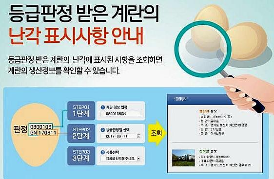 살충제 계란 확인방법::OmnisLog